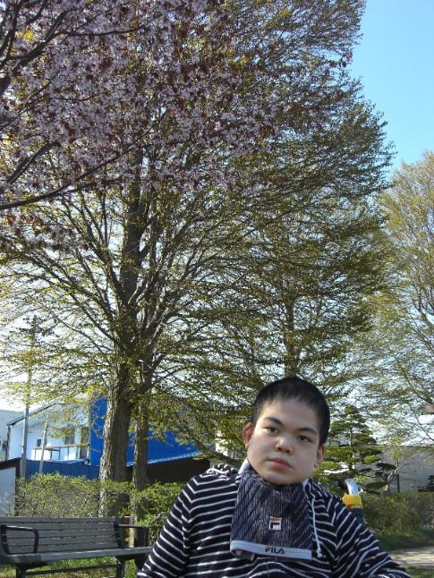 2009桜男.jpg