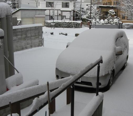 いよいよ雪.jpg