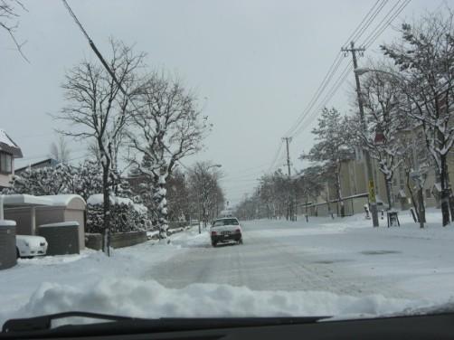 いよいよ雪1.jpg