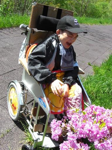 散歩で花に触れる1.jpg