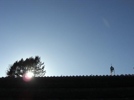 秋の旭山.jpg